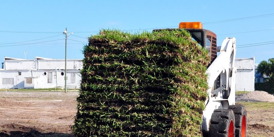 skid steer loader carrying layers of sod grass
