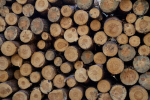 wood logs for sale in reading
